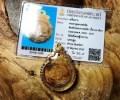 婆龙遮 2530年 月白椰壳手雕拉胡